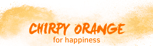 Chirpy Orange for Happiness