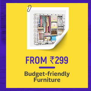 Budget Friendly Furniture